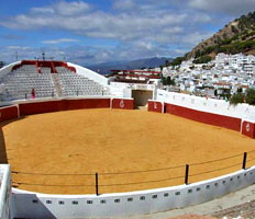 Picture of oval Bullring of Mijas